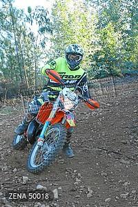 ZENA 50018