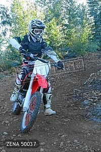 ZENA 50037