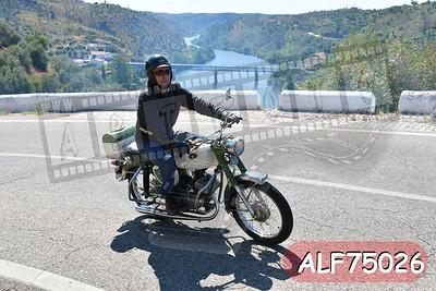 ALF75026