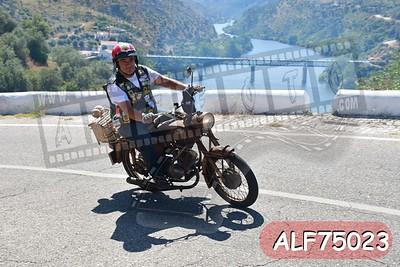 ALF75023