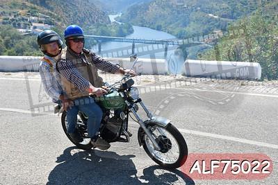 ALF75022
