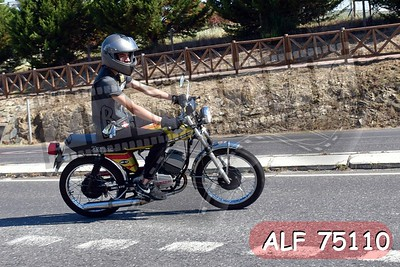 ALF 75110
