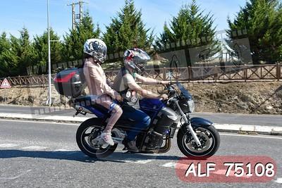 ALF 75108