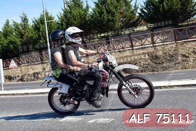 ALF 75111