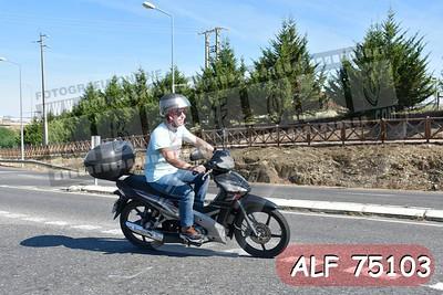ALF 75103