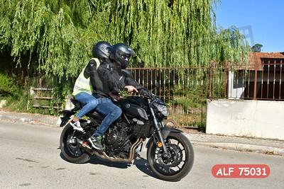 ALF 75031