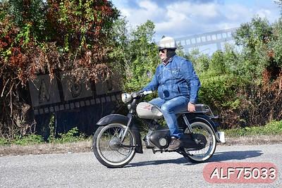 ALF75033
