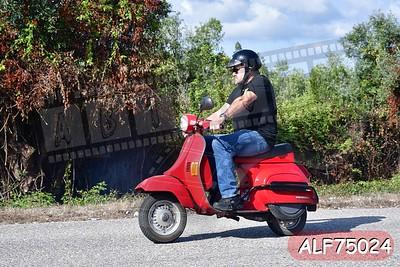 ALF75024