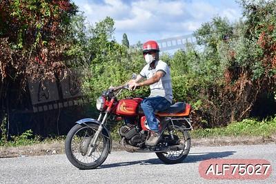 ALF75027