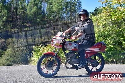 ALF75070