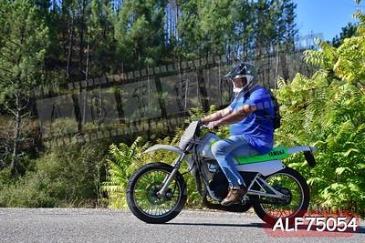 ALF75054