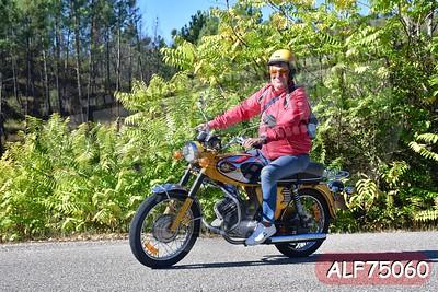 ALF75060