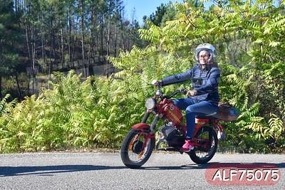 ALF75075