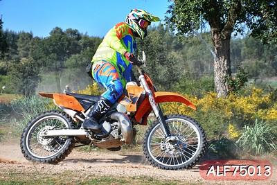 ALF75013