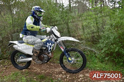 ALF75001