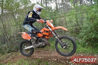 ALF75037
