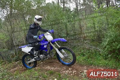 ALF75011