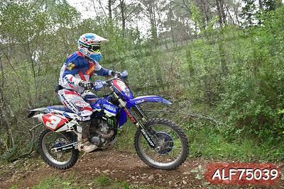 ALF75039