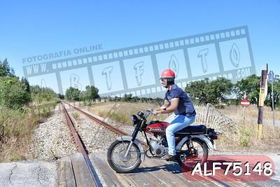 ALF75148