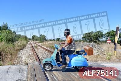 ALF75141