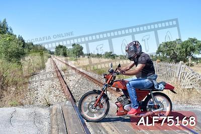 ALF75168