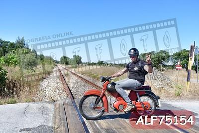 ALF75154