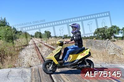 ALF75145