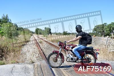 ALF75169