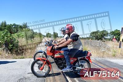ALF75164