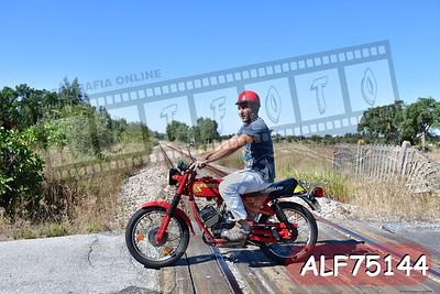 ALF75144