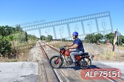 ALF75151