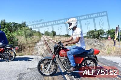 ALF75152