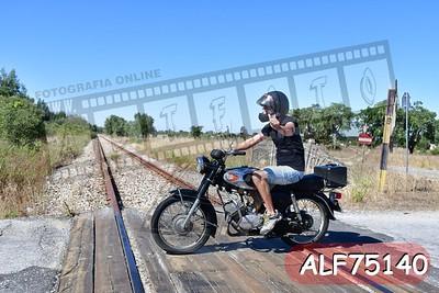 ALF75140
