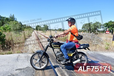 ALF75171