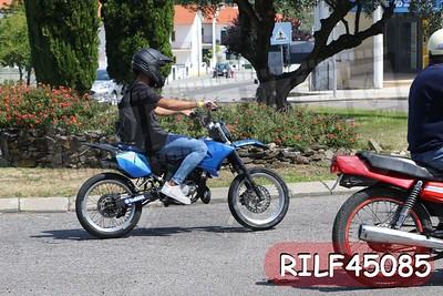 RILF45085
