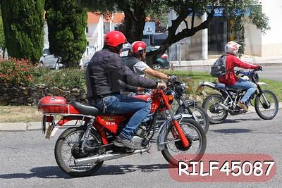 RILF45087