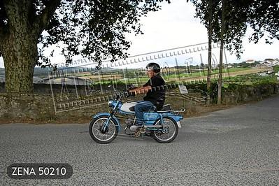 ZENA 50210