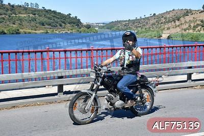 ALF75139