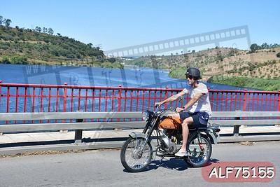ALF75155