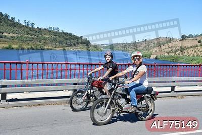 ALF75149
