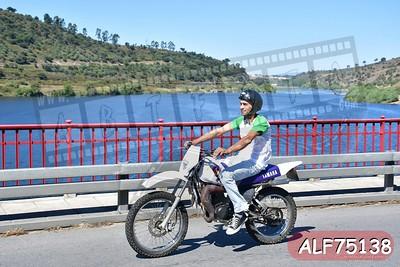 ALF75138