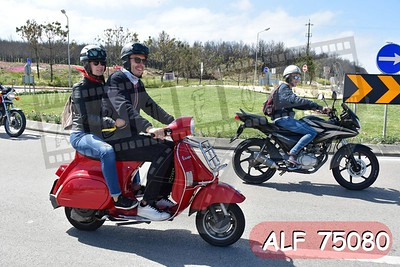 ALF 75080