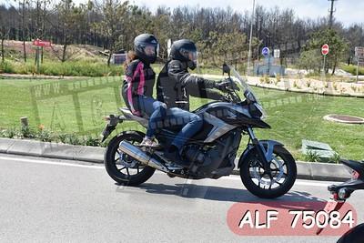 ALF 75084