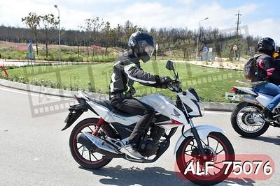 ALF 75076