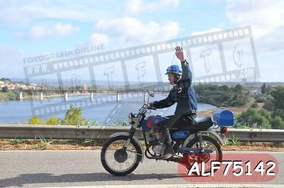 ALF75142
