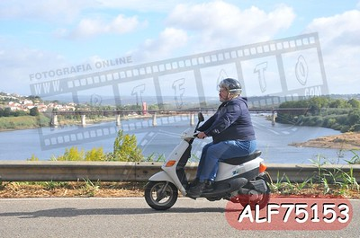 ALF75153