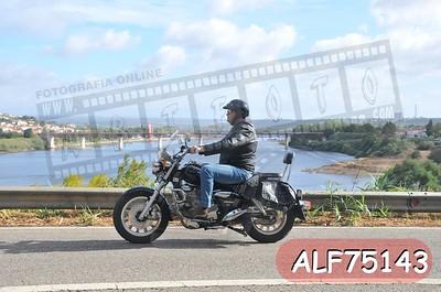 ALF75143