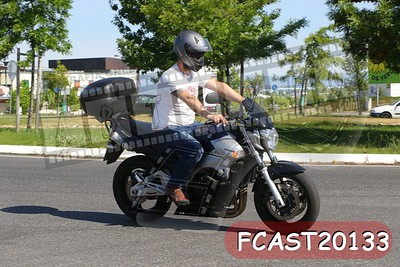 FCAST20133