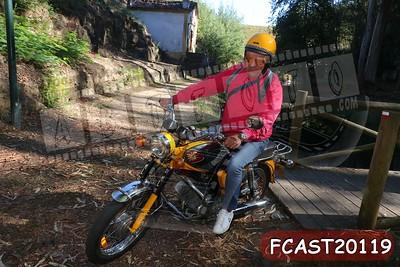 FCAST20119