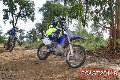 FCAST20118